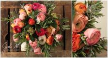 La renoncule haute en couleur et des senteurs de romarin. ©Gali M Livraison de fleurs à Toulouse